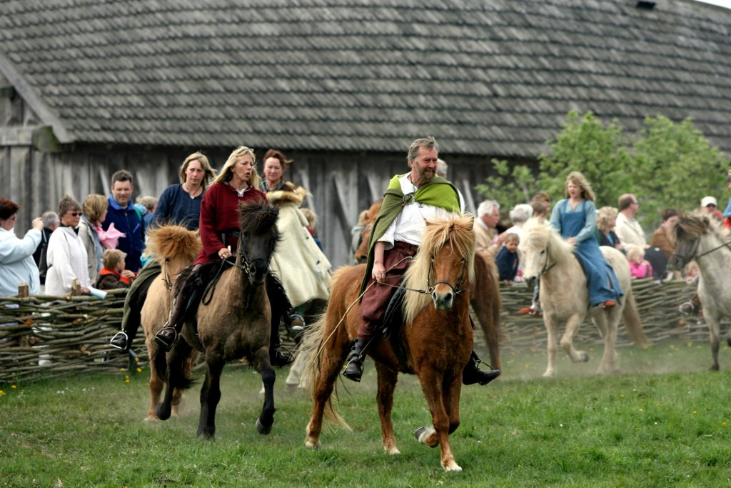 Danmarks største vikingemarked I dag og i morgen byder Ribe Vikingecenter velkommen til det årlige vikingemarked. På markedet kan man sammen med 2-300 vikinger opleve et væld af vikingetidshåndværk, kampshow, rideopvisninger og meget mere. Her er der ride opvisning.