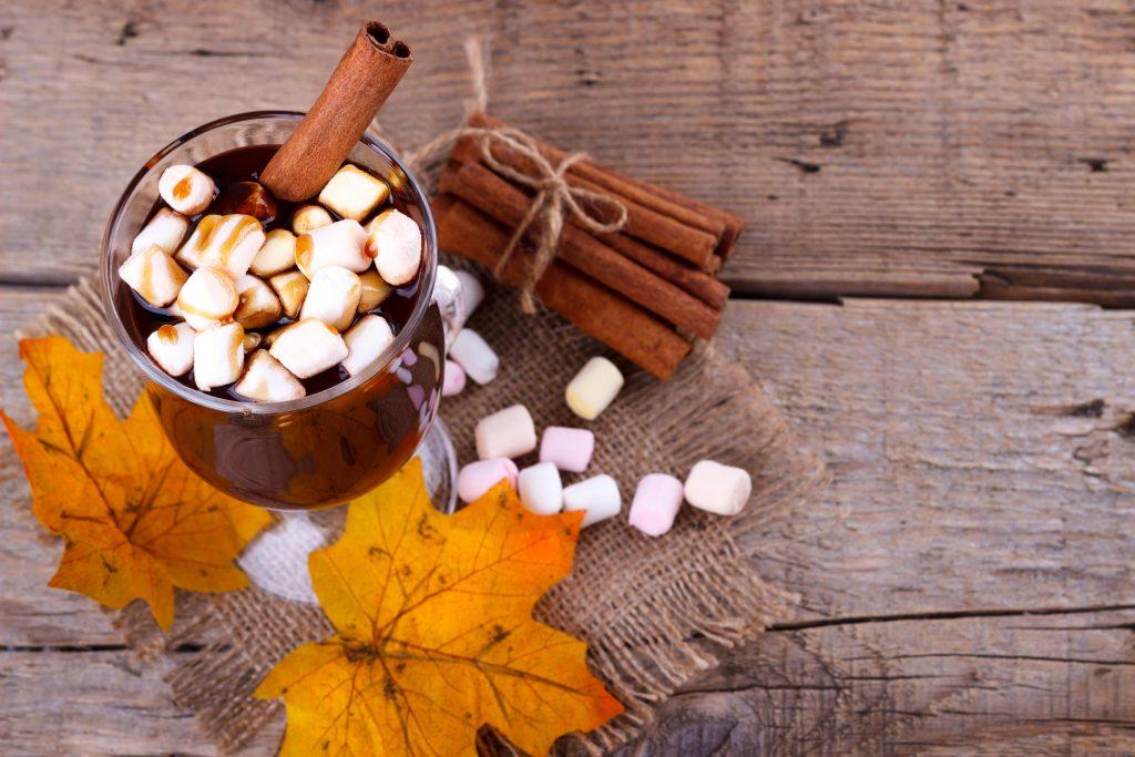 Varm kakao-vegansk kakao med kanel