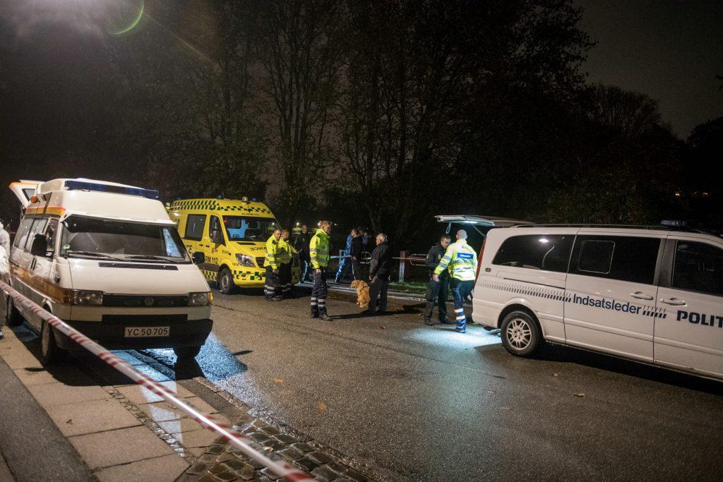 En 32-årig dansk højgravid kvinde blev dræbt med flere knivstik da hun luftet hund i Elverparken i Herlev. (Foto: Polfoto)