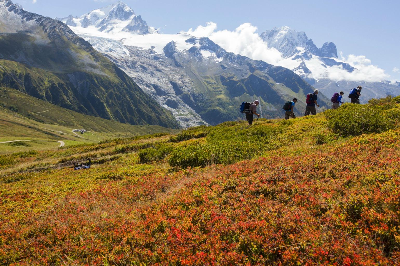 Trekking i Schweiz med smuk natur og bjerge (Foto: All Over)