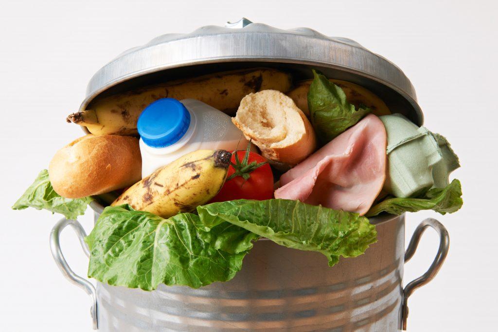 madspild bæredygtighed miljø co2 bæredygtig, bæredygtighed, bæredygtigt