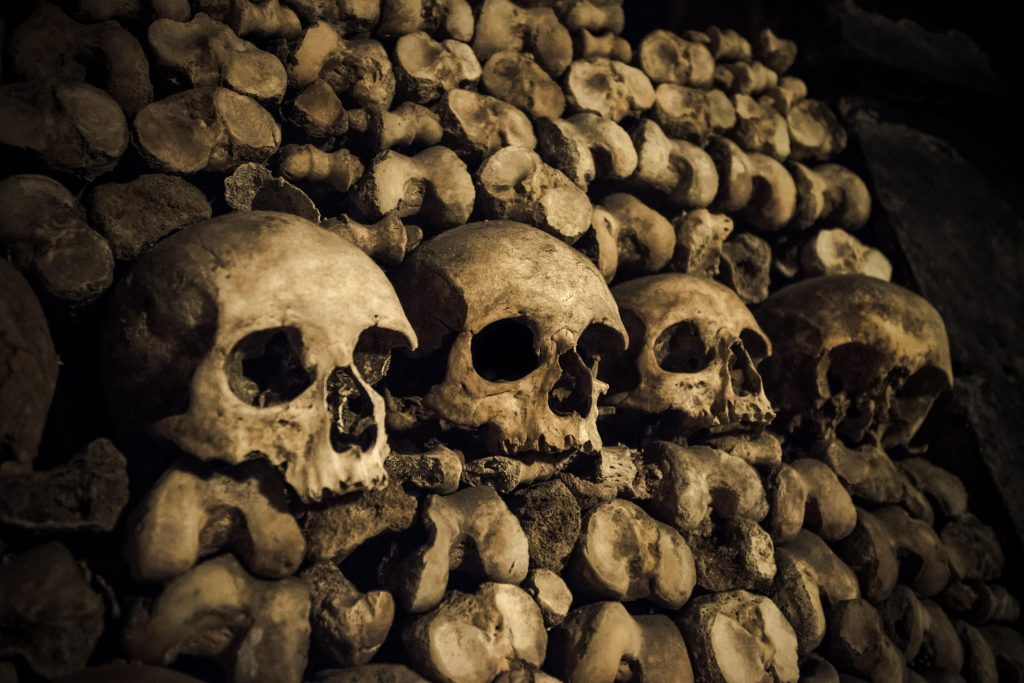 katakomb, katakomber, paris, paris katakomber, frankrig, teenagere, faret vild, blevet væk, eftersøgning, sporhunde, fundet,