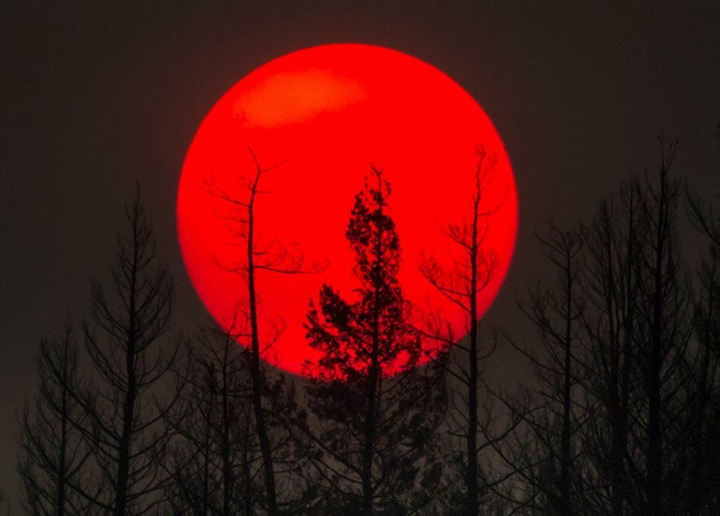 canada, sol, brand, british columbia, naturbrand, naturkatastrofe, natur, miljø, sol, røg