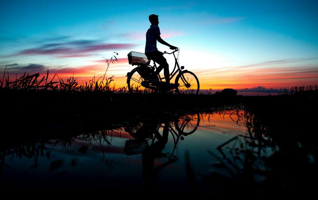 cykel, tyskland, sol, solnedgang, dagens billede, sommer, silhouet