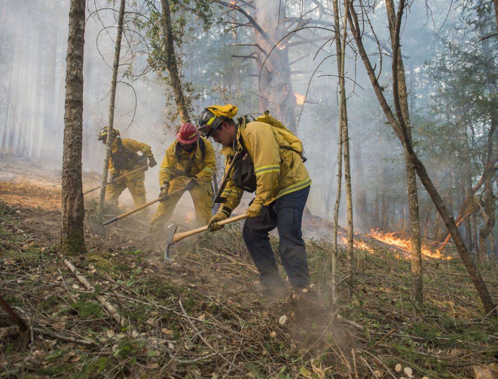californien, bran, brande, brændt, døde, omkomne, brandmænd, brandfolk, skovbrande, sårede, flygtede, evakueret, ild, natur