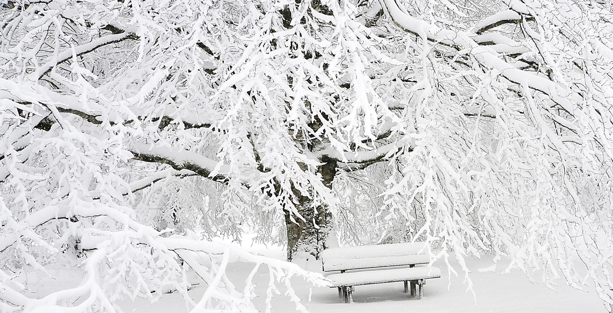 jul, juletid, sne, vinter, rejse, sydpå, julen