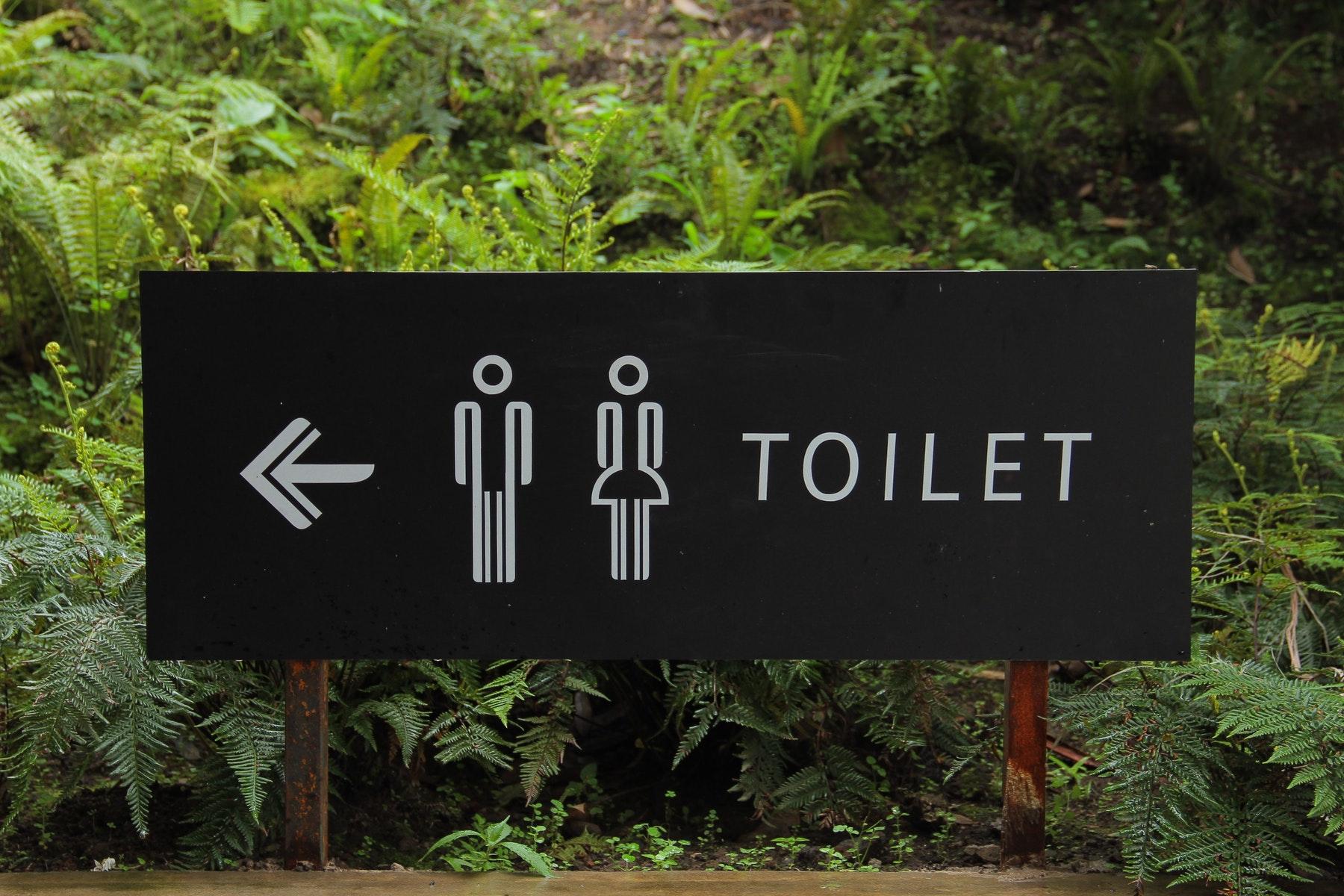 lgbtqia. Toilet. Skilt. Findes der kun to køn: Mand og kvinde? Mange føler sig som begge, ingen af delene, noget midt i mellem eller noget helt andet. (Foto: Pexels)