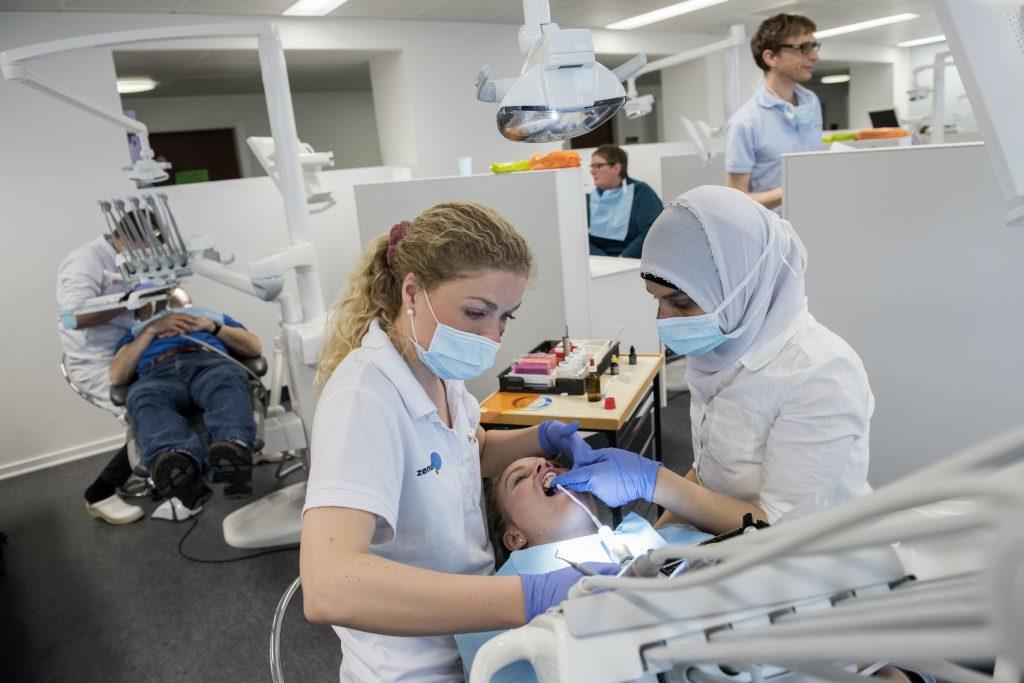 tandlægeforeningen, konkurrence- og forbrugerstyrelsen, priser, økonomi, penge, tandlægeregning, tandlæge, tænder, tandpleje, behandling, regionerne, overenskomst, basispriser, rabatter, gratis behandling, sundhed,