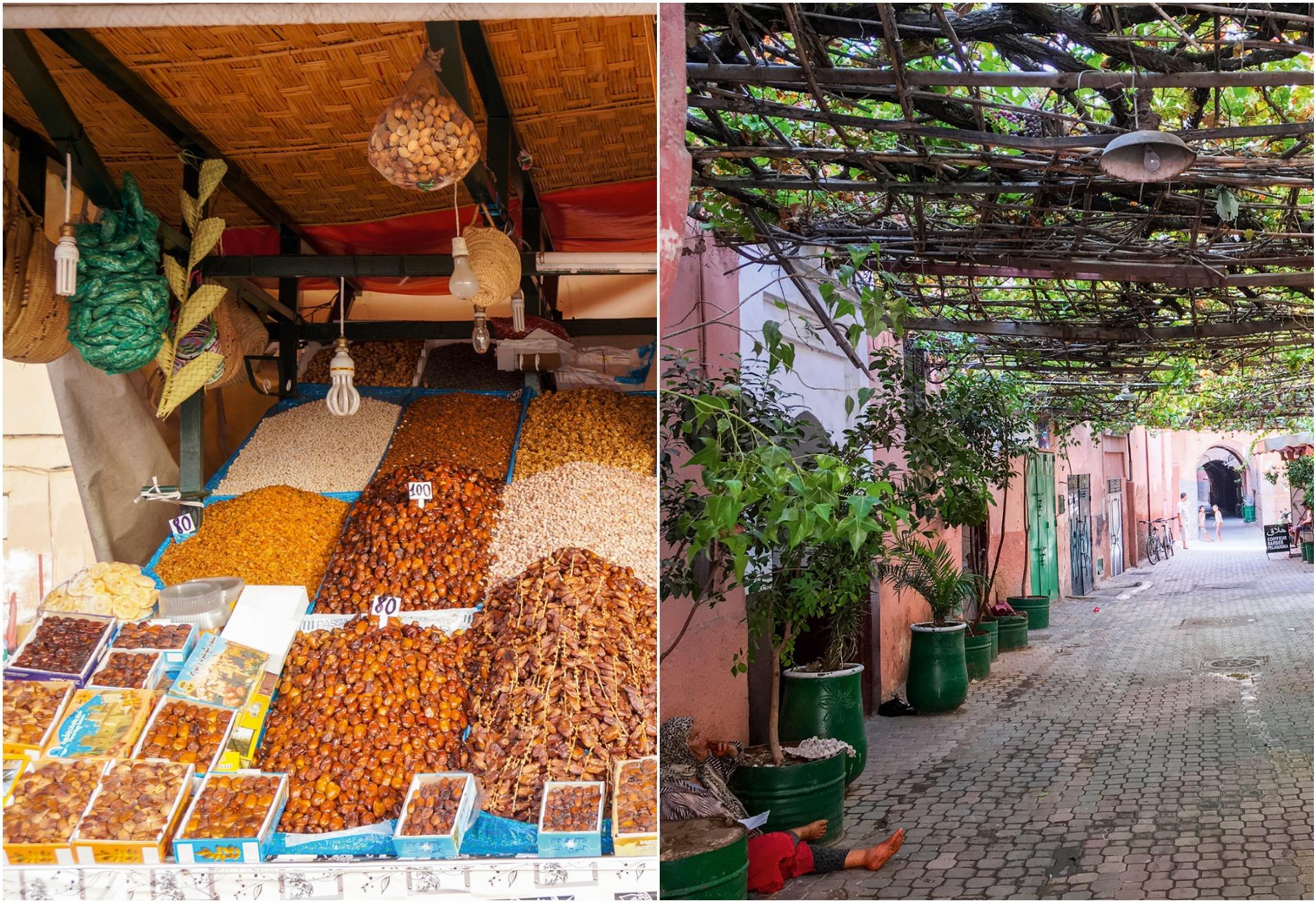 marrakech bog