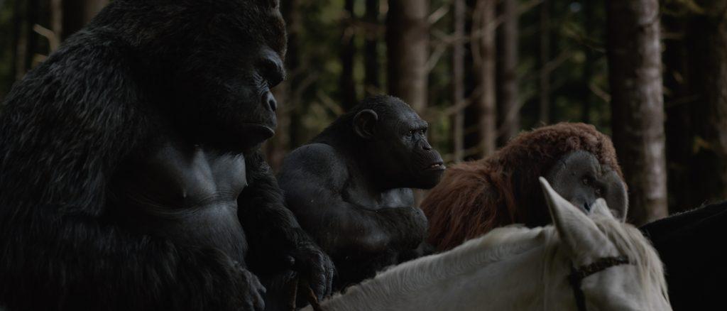 bedste film i 2017, abernes planet, film, movie, opgøret, bedstefilm