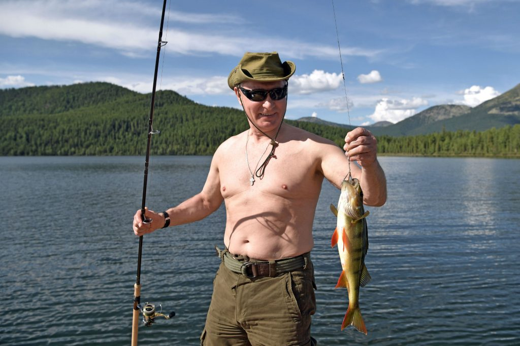 vladimir putin, præsident, præsidentvalg, rusland