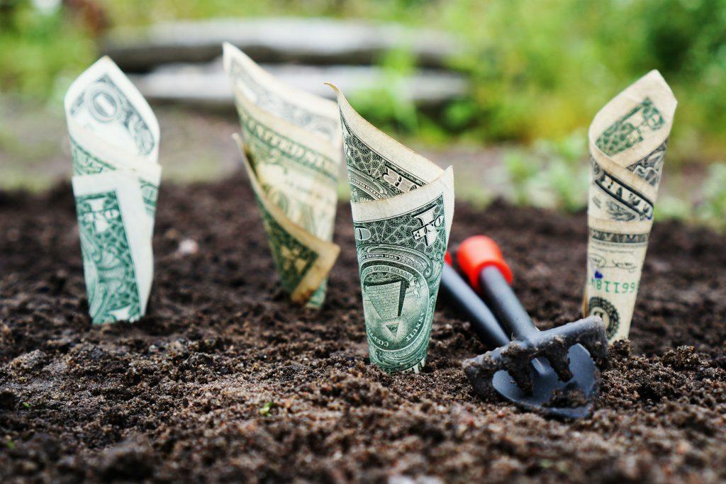 overforbrug, forbrug, penge, økonomi, shopping, mad, trine baadsgaard, nøjsom, nojsom, spare, prioritere, et år uden overforbrug, trine baadsgaard, økonomi, penge, kroner, spare, omprioritere, drømme, værdi, lykke, ønsker