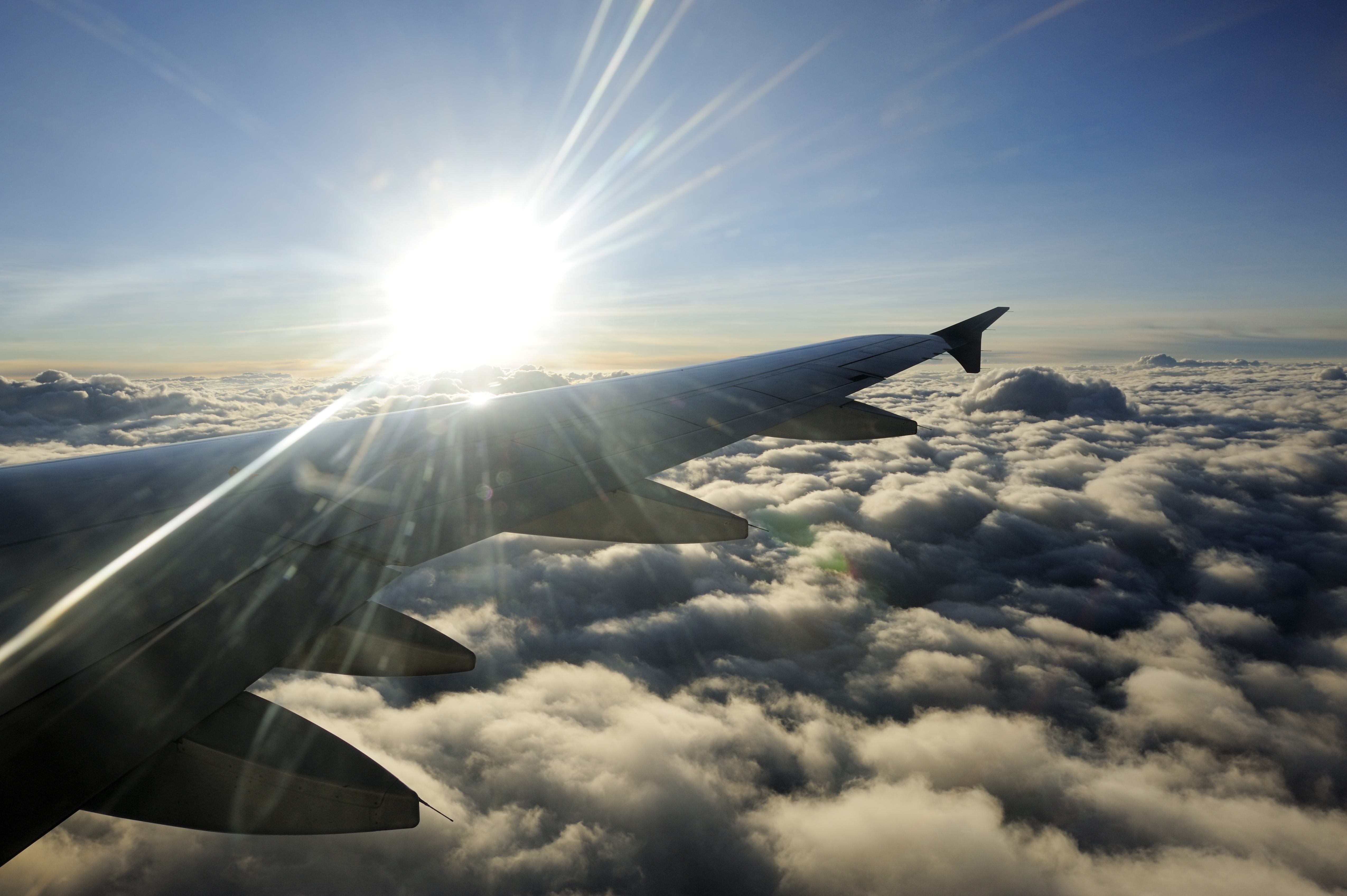 Flyvinge glinser i solen