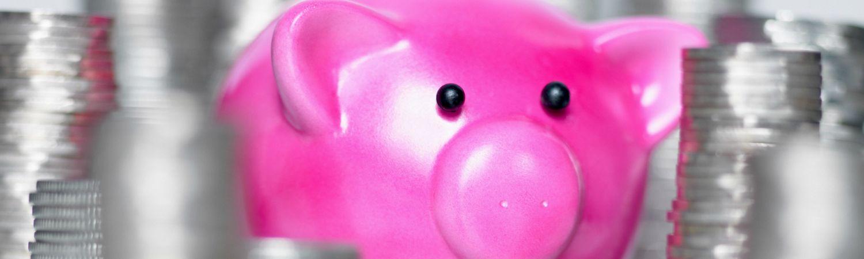 Overskydende skat: Det bruger danskerne pengene på