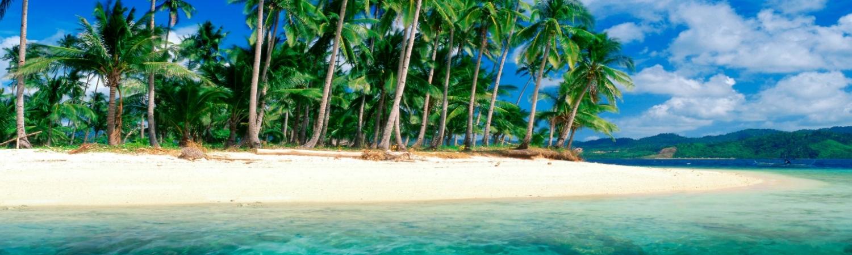 par, rejse, ferie, dykker, dykning, palmer, strand, palmestrand, vandet, havet
