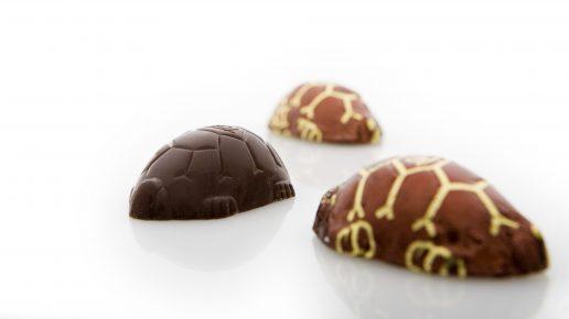 toms, chokolade, fyldt chokolade, skildpadder, kæmpeskildpadder, karamel, test, type