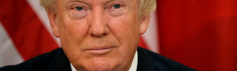 paul manafort, michael flynn, donald trump, vladimir putin, putin, rusland, usa, amerika, amerikansk valg, præsidentvalg, præsident, valg, politik, udland, hillary clinton, email, fbi, james comey, fbi-chef, fyring, dække, russiske forbindelser, russer, hacker, hackede emails, demokrater, republikanere, wikileaks, barack obama, rex tillerson