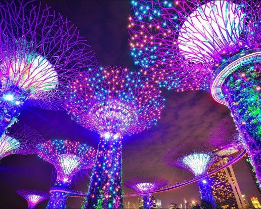 guide, kultur, kulturguide, festival, oplevelser