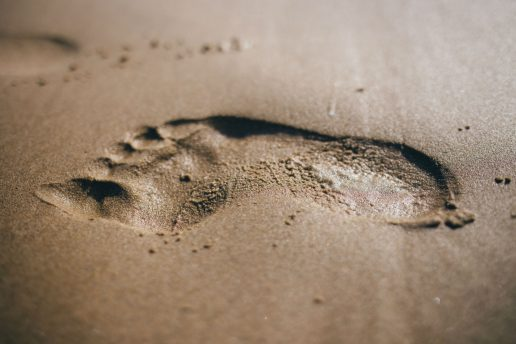 planet, jorden, global footprint network, earth overshoot day, jorden, planeten, klima, miljø, bæredygtighed, livsstil, påvirkning, aftryk, natur,
