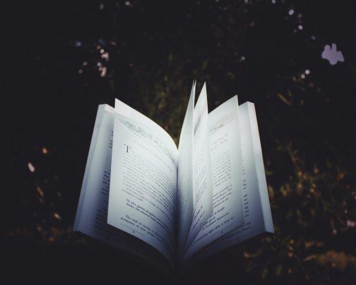 novelle, roman, gyser, bog, uhygge, efterår