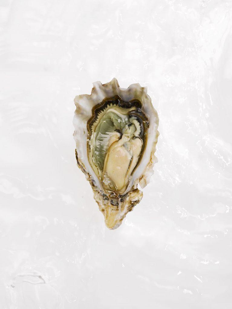 Hvis dine kønslæber minder lidt om denne østers, er de helt normale. Hvis de ikke gør? Stadig meget almindeligt. (Foto: All Over)