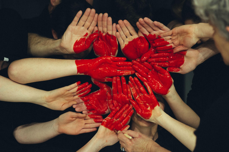 donor, donorer, donation, organ, organer, organdonation, ellen trane nørby, rekord, afdøde, døde, hjernedøde, svær tid, beslutning, tag stilling