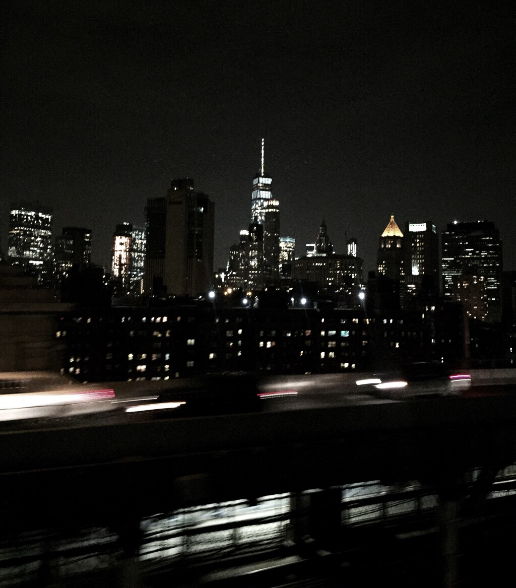 rejse alene, rejse, new york, familie, savn, veninder, las vegas, washington, sommerferie, newark, manhattan, oplevelse
