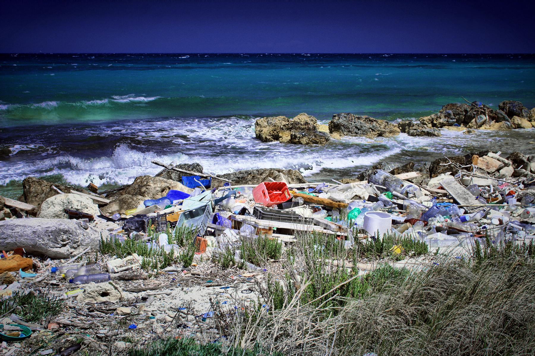 Forurening, plastik, plastikaffald, havskildpadder, kenya