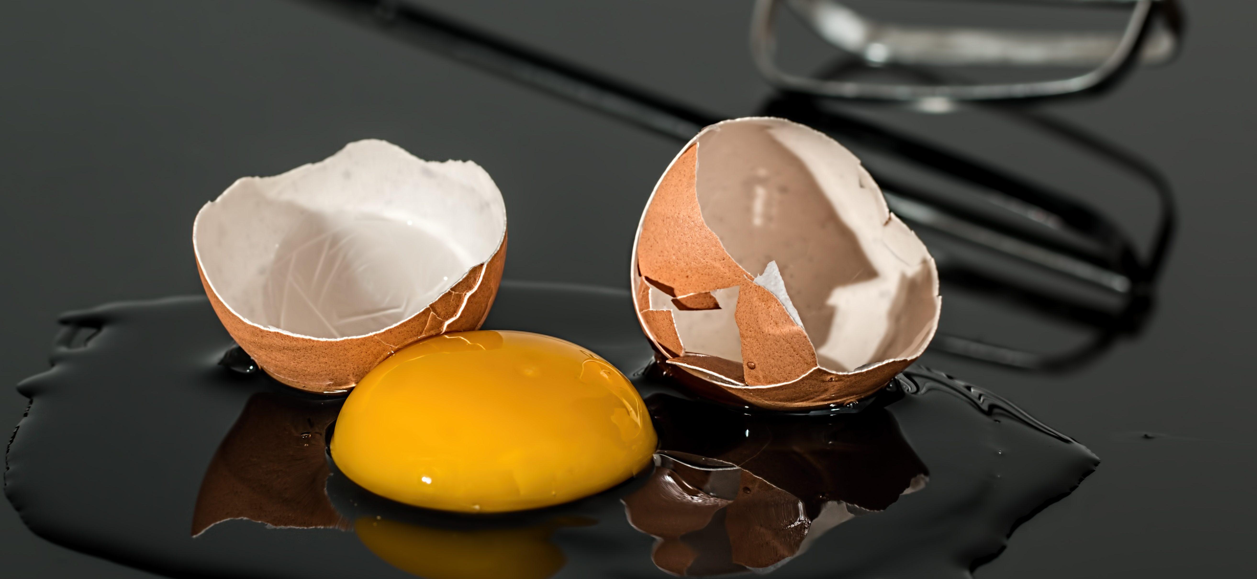 æg råt blomme holdbarhed