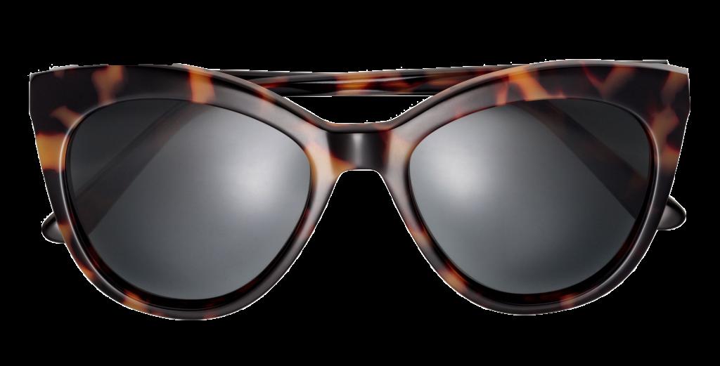 leo, leopard, solbriller