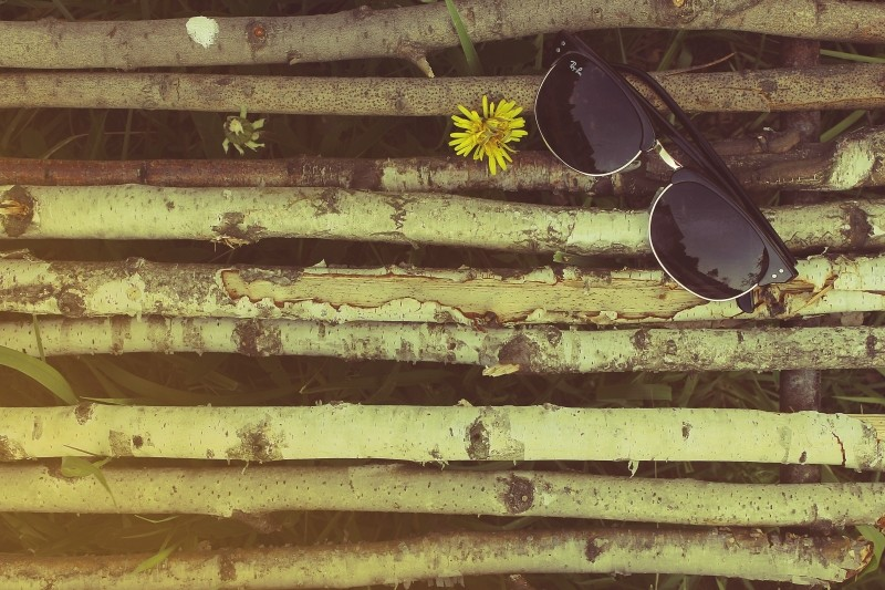 Solbriller, pollen, pollenallergi, ray ban, allergy, sunglasses