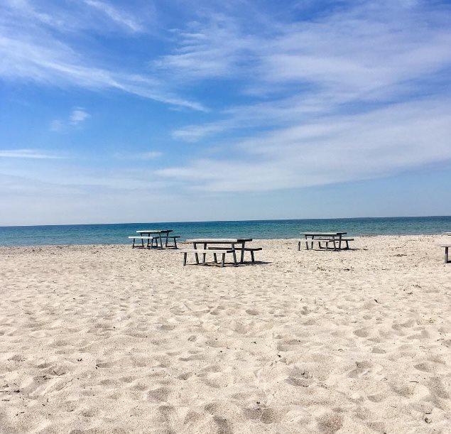 Stillinge Strand, Vestsjælland, sommer