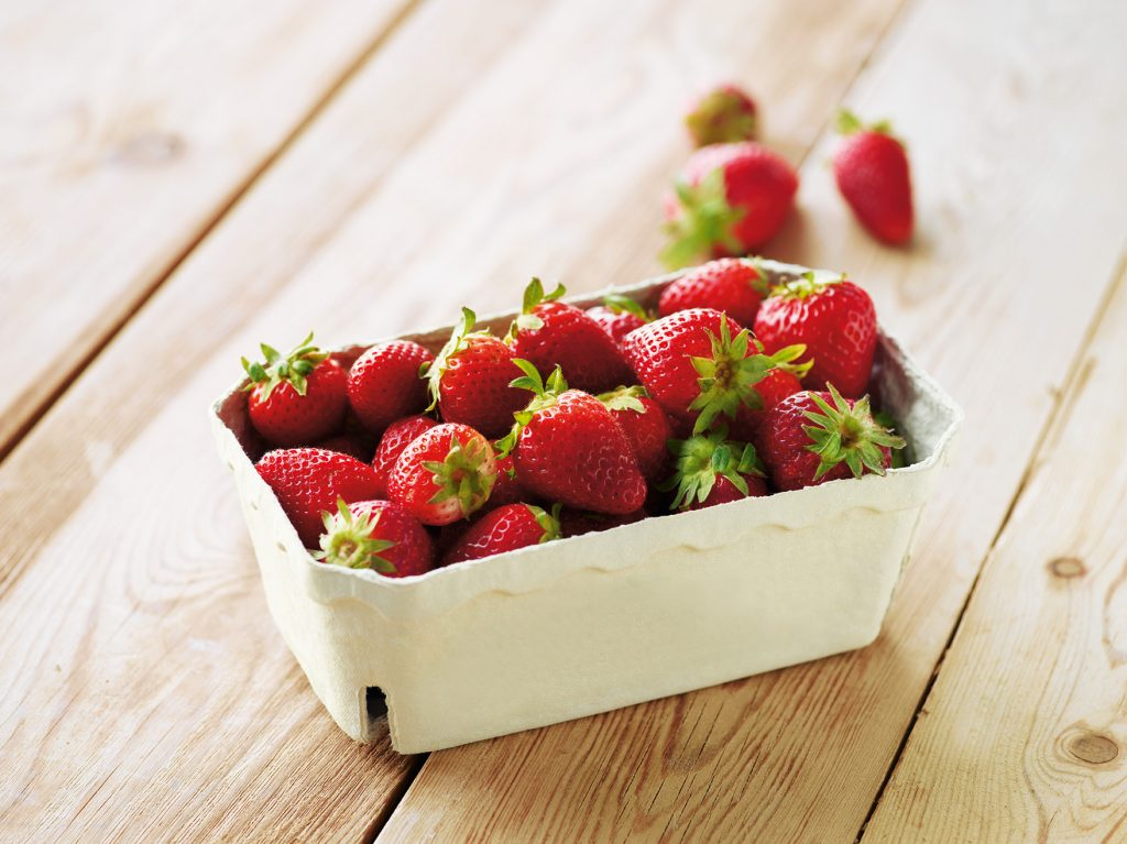 jordbær jordbærbakke dansk gartneri