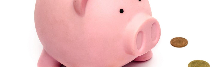 Sparegris penge money gris opsparing spare