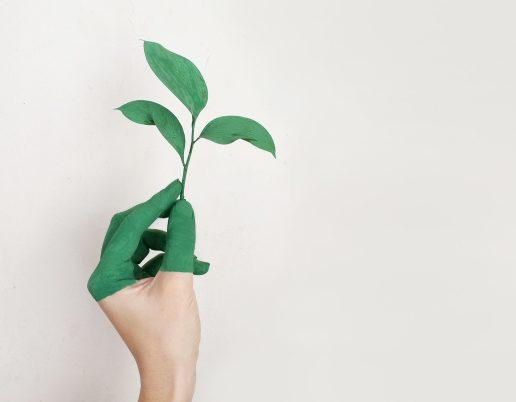 Genbrug klima miljø