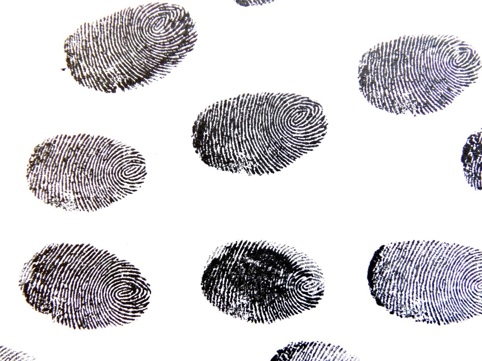Fingeraftryk, fingerprint, finger