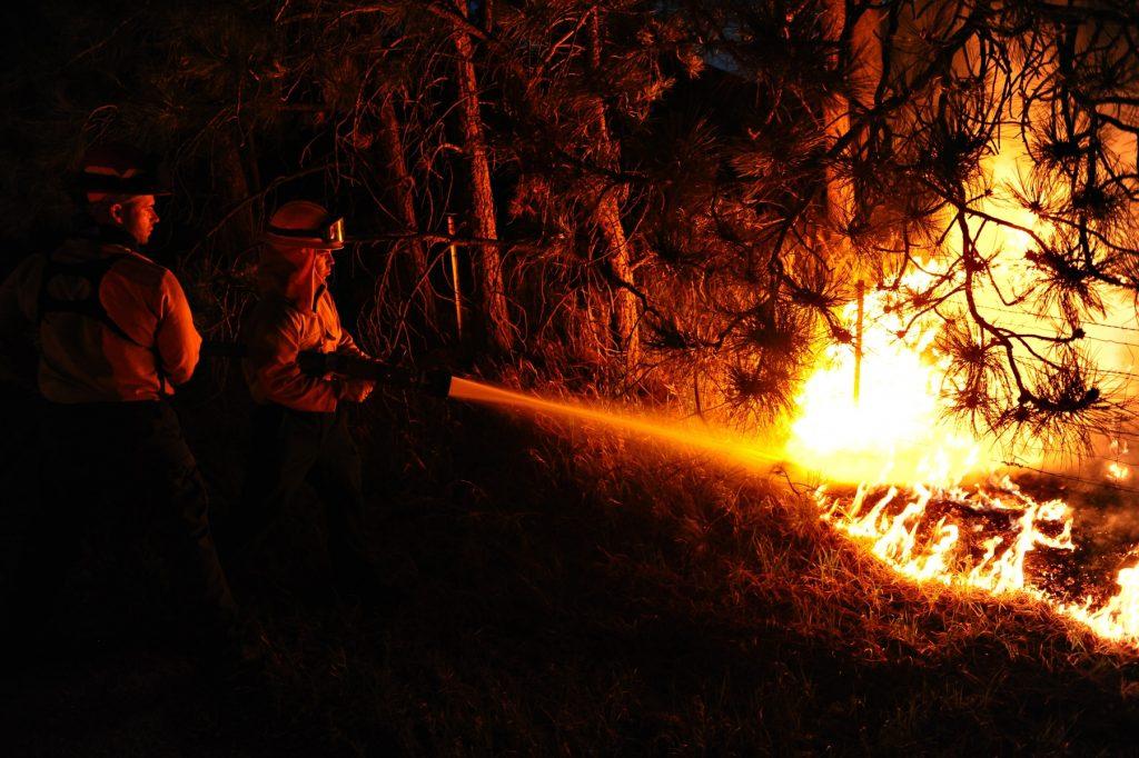 Skovbrand, ildebrand, brand, brandmænd, ild, brænder