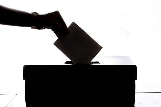 Valg, stemme, stemmeret