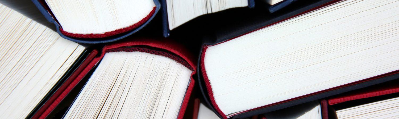 bog bøger skole læring (Foto: Pxhere)