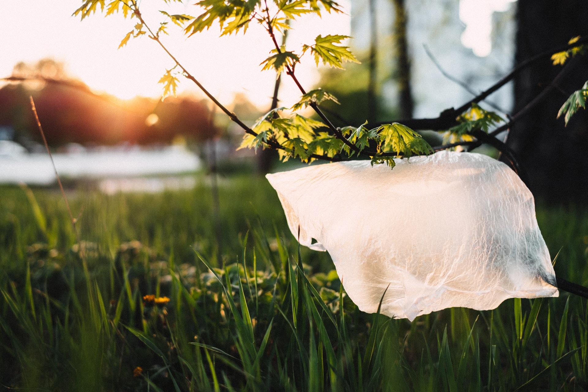 Plastikpose, plastik, forurening, co2