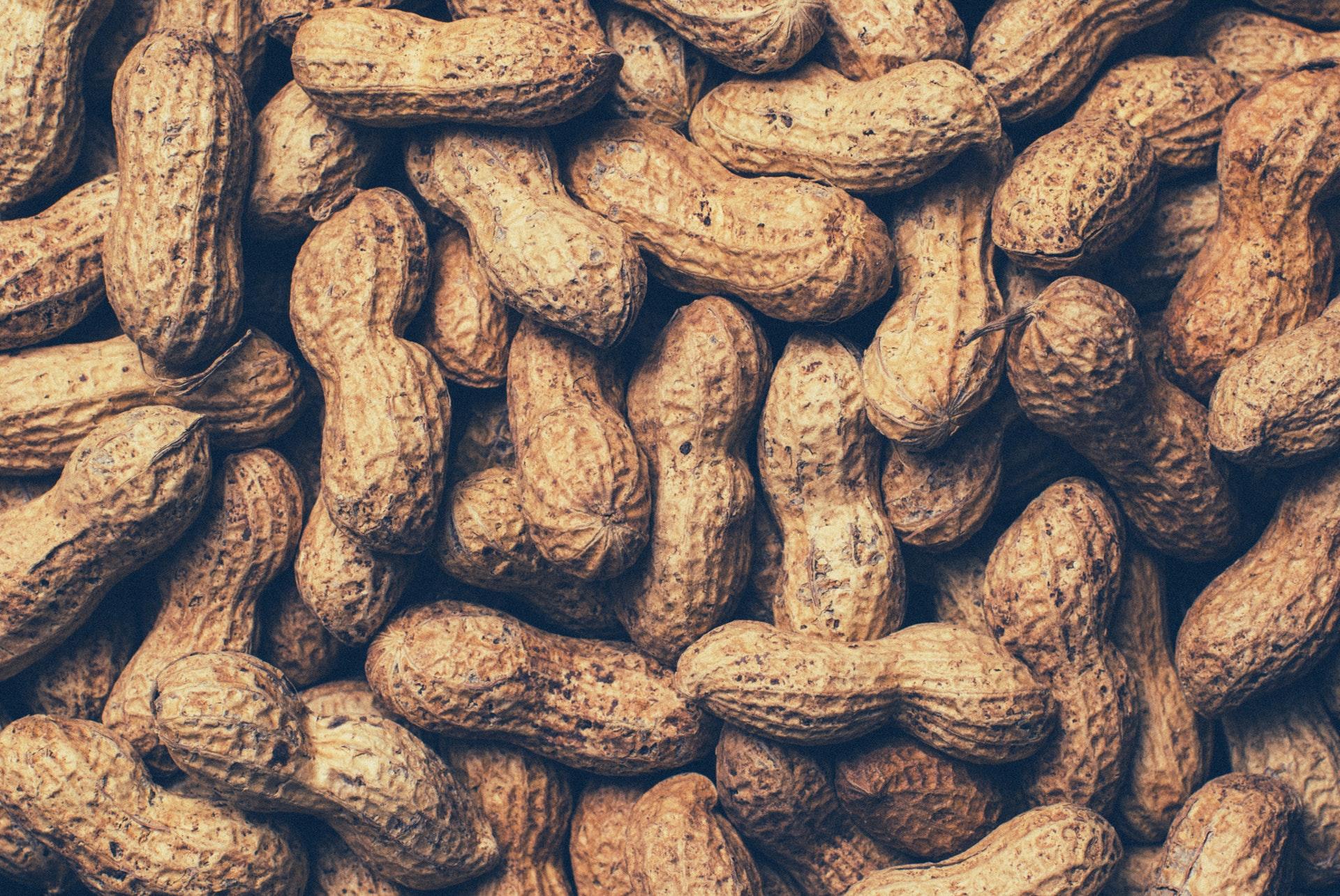 peanuts, nødder, allergi