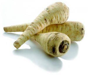Pastinak grøntsag sæson (Foto: sæson)