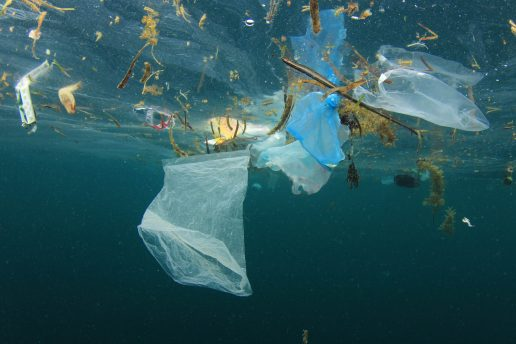 Plastik, havet, forurening, wwf