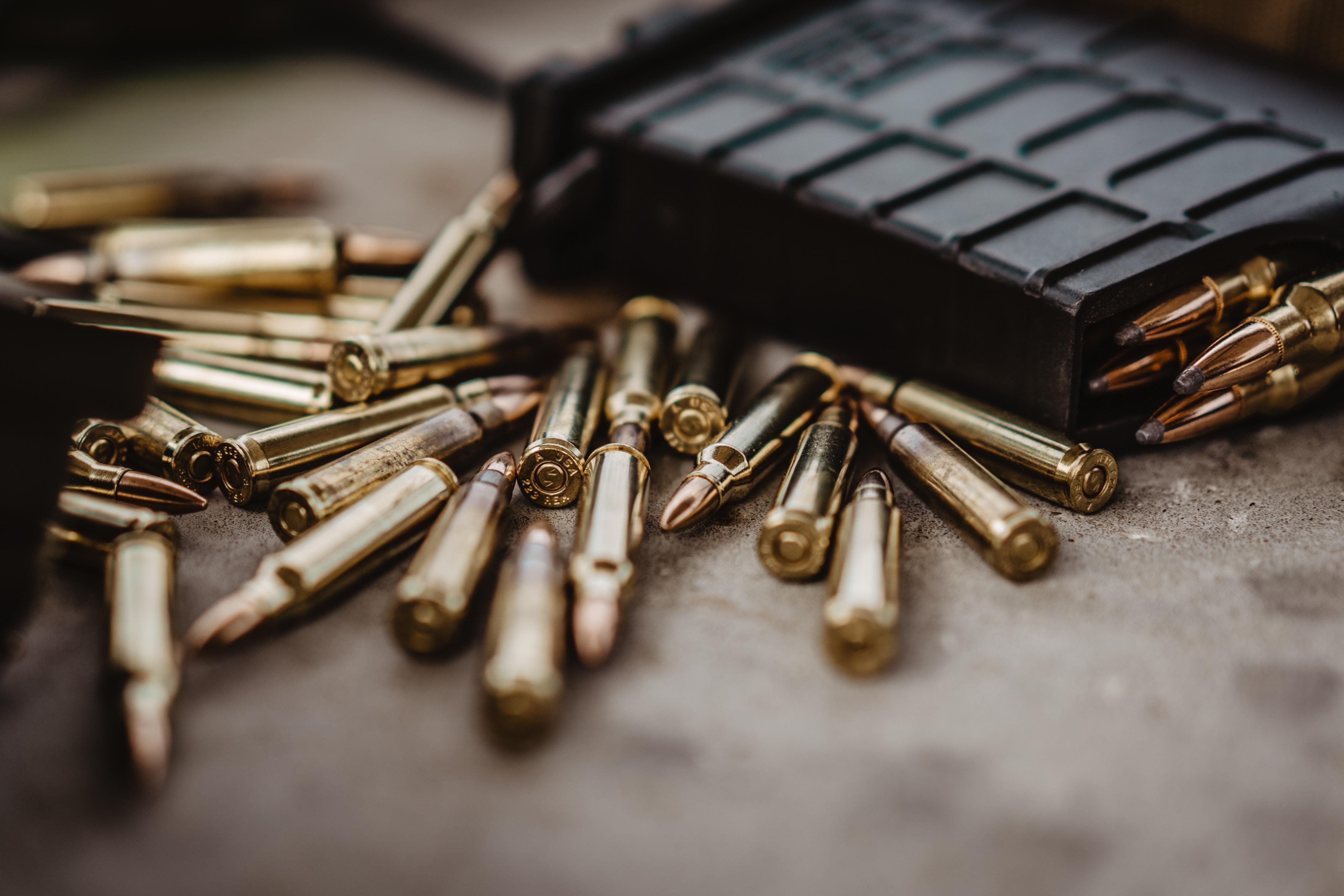 new zealnd forbyder flere våbentyper (Foto: Unsplash)