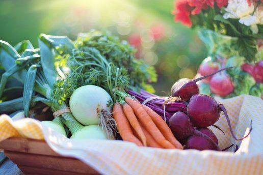 grøntsager, grøntsag, grønt, veggie, veggies, vegan, vegetar, sprøjtemidler, landbrug