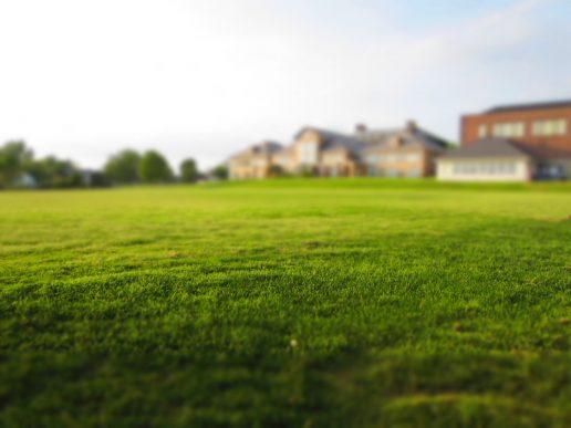 græs, have, hus, bolig, sommer, kompost, hjem, sol