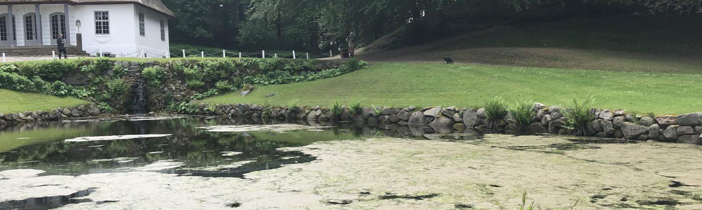 liselund lysthus bog møn gamle dage jane austen s' park (Foto: MY DAILY SPACE)