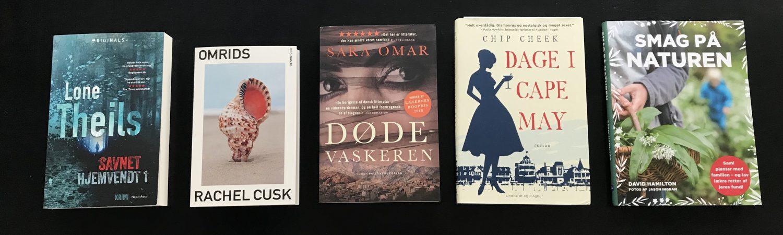 fem på stribe bog bøger boganmeldelse (Foto: MY DAILY SPACE)