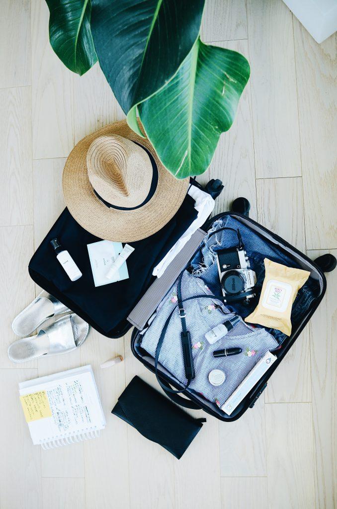 ferie, rejse, kuffert, sommer, folkemøde