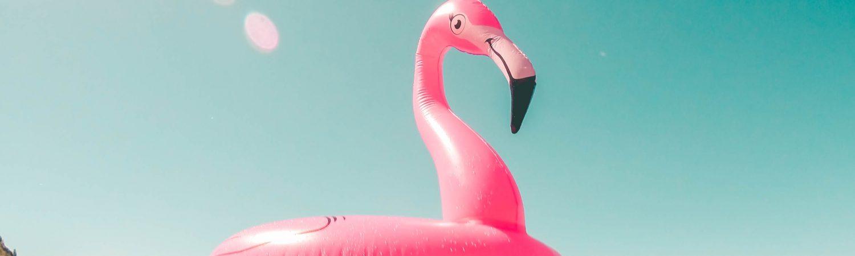 vand pool sommer sommerferie flamingo (Foto: Unsplash)